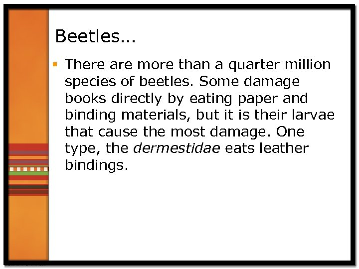 Beetles… § There are more than a quarter million species of beetles. Some damage