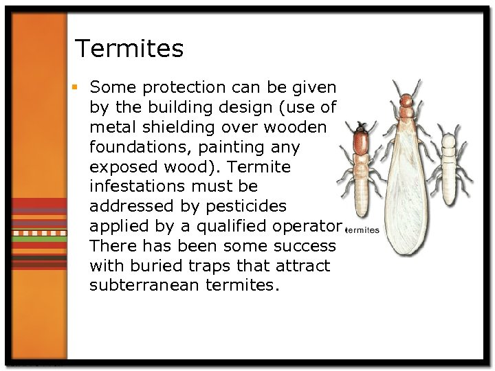 Termites § Some protection can be given by the building design (use of metal