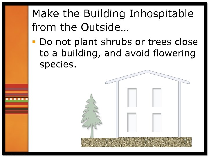 Make the Building Inhospitable from the Outside… § Do not plant shrubs or trees