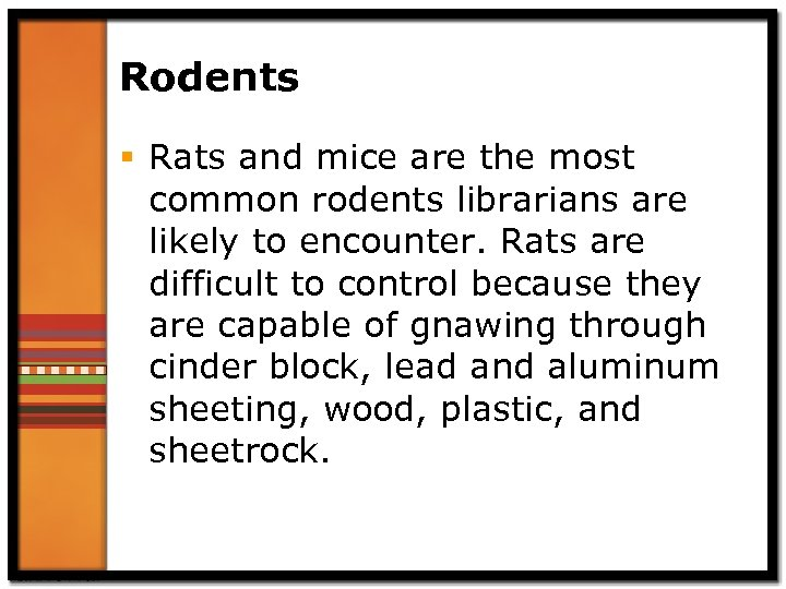 Rodents § Rats and mice are the most common rodents librarians are likely to