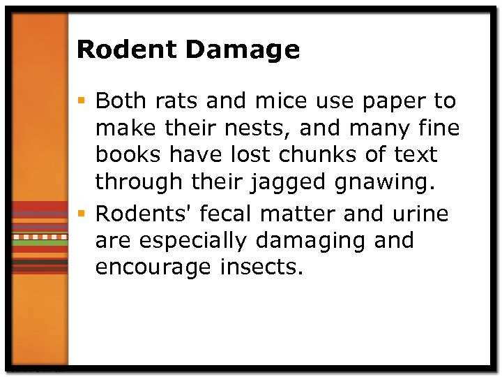 Rodent Damage § Both rats and mice use paper to make their nests, and