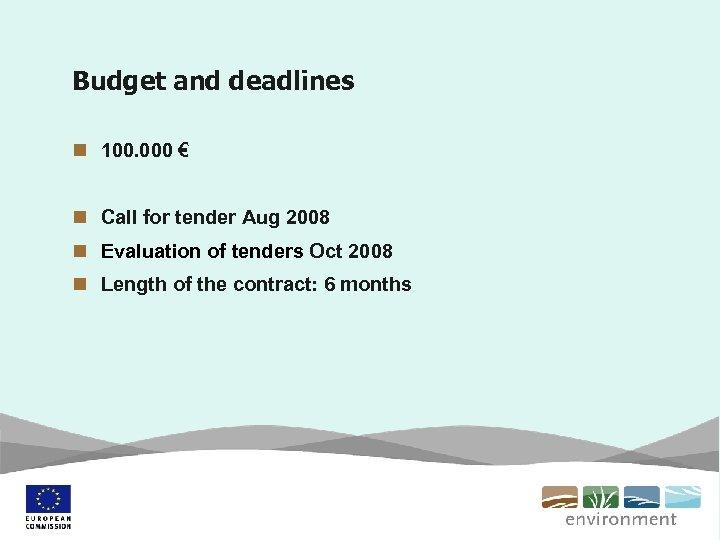 Budget and deadlines n 100. 000 € n Call for tender Aug 2008 n