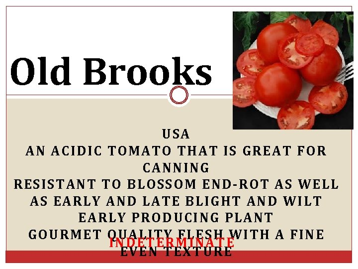 Old Brooks USA AN ACIDIC TOMATO THAT IS GREAT FOR CANNING RESISTANT TO BLOSSOM