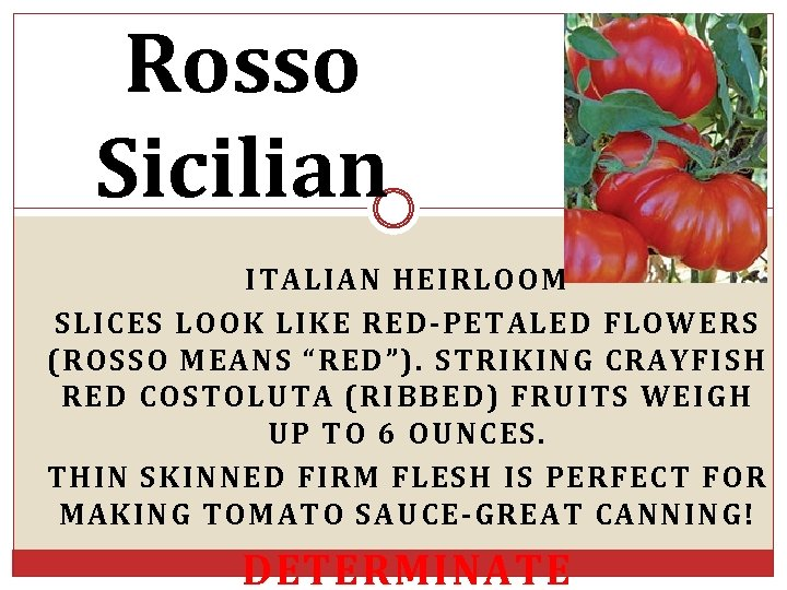 "Rosso Sicilian ITALIAN HEIRLOOM SLICES LOOK LIKE RED-PETALED FLOWERS (ROSSO MEANS ""RED""). STRIKING CRAYFISH"