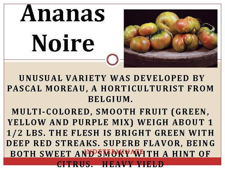 Ananas Noire UNUSUAL VARIETY WAS DEVELOPED BY PASCAL MOREAU, A HORTICULTURIST FROM BELGIUM. MULTI-COLORED,