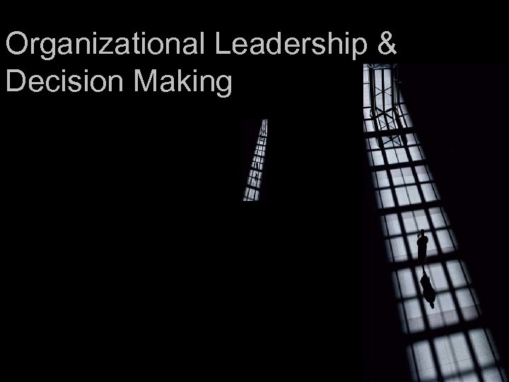 Organizational Leadership & Decision Making