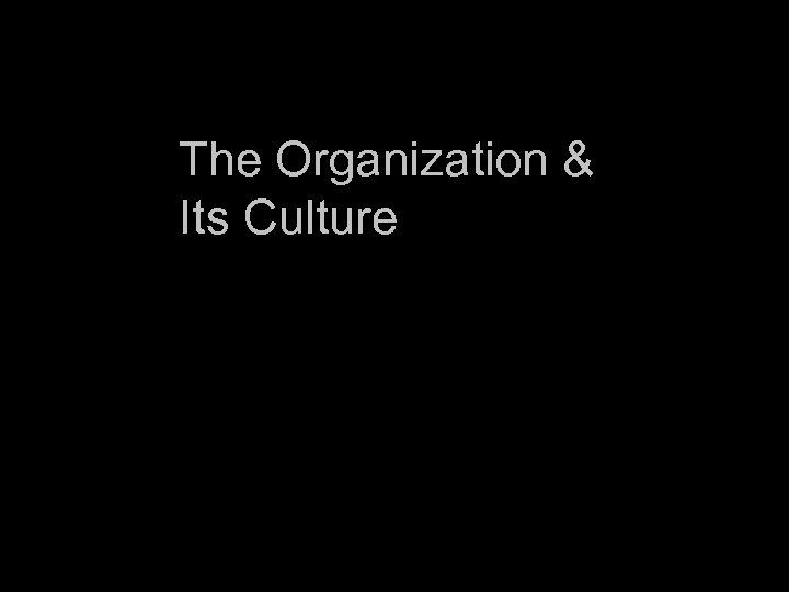 The Organization & Its Culture