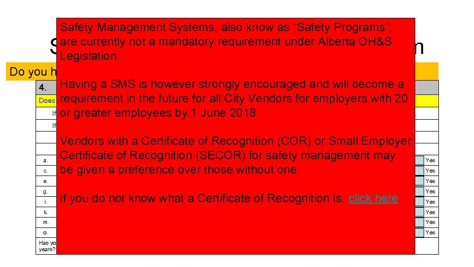 "Safety Management Systems, also know as ""Safety Programs"", are currently not a mandatory requirement"