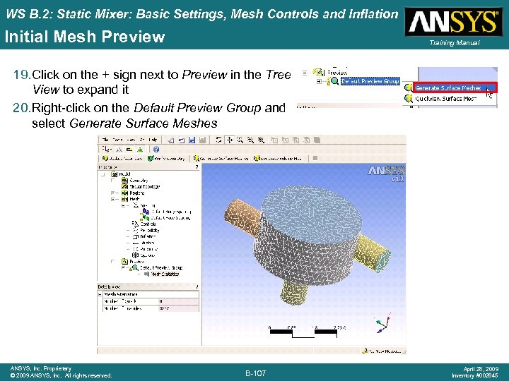 WS B. 2: Static Mixer: Basic Settings, Mesh Controls and Inflation Initial Mesh Preview