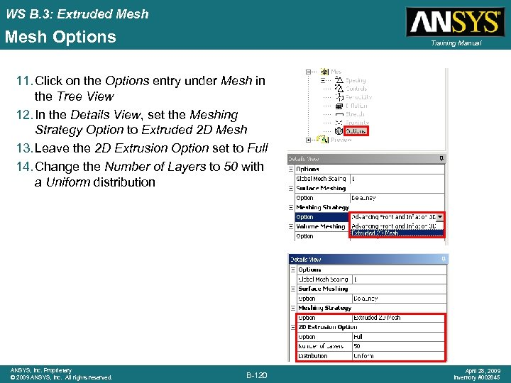 WS B. 3: Extruded Mesh Options Training Manual 11. Click on the Options entry