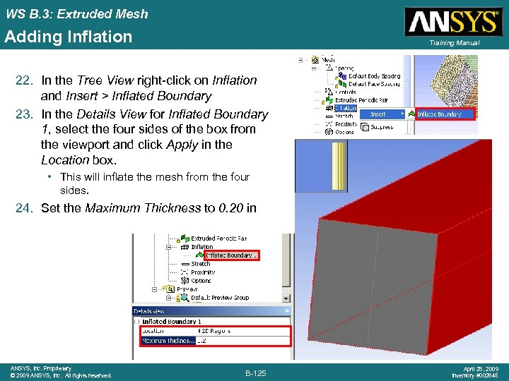 WS B. 3: Extruded Mesh Adding Inflation Training Manual 22. In the Tree View