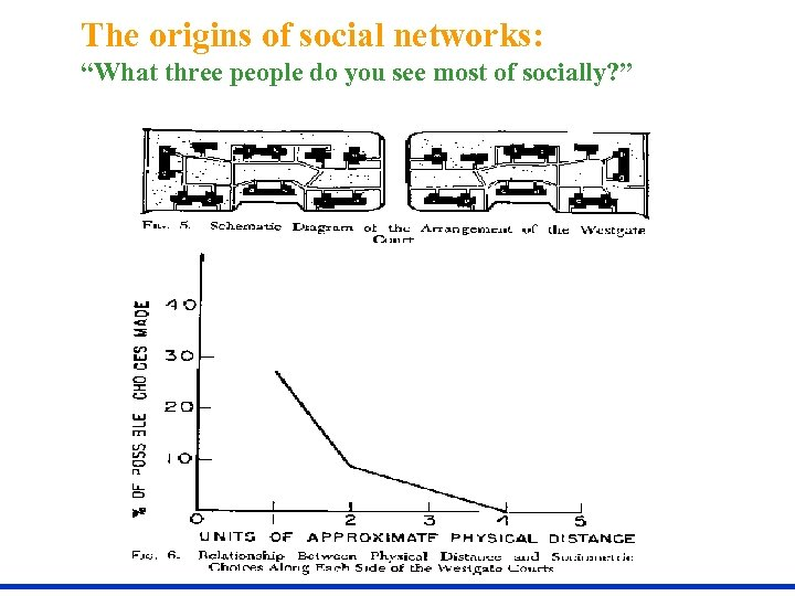 """The origins of social networks: """"What three people do you see most of socially?"""