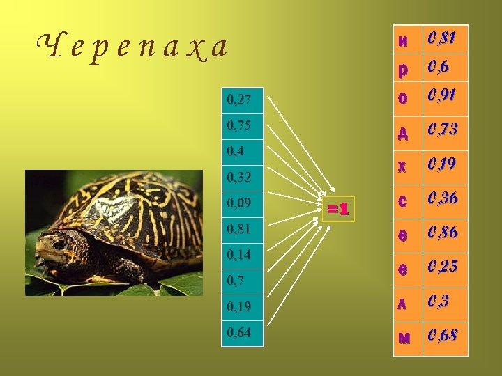 Черепаха и 0, 81 р 0, 6 о 0, 91 0, 27 0, 75