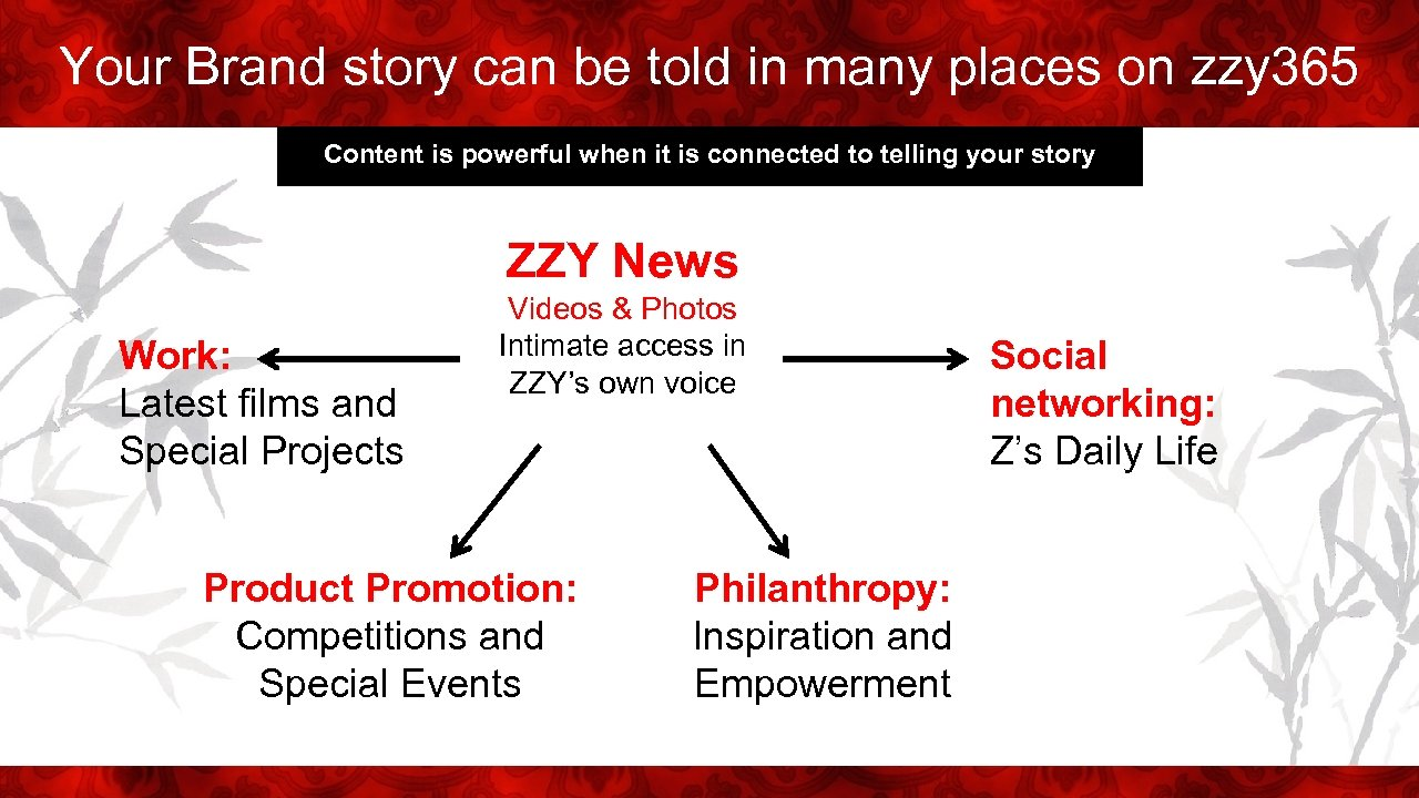 Your Brand story can be told in many places on zzy 365 Content is