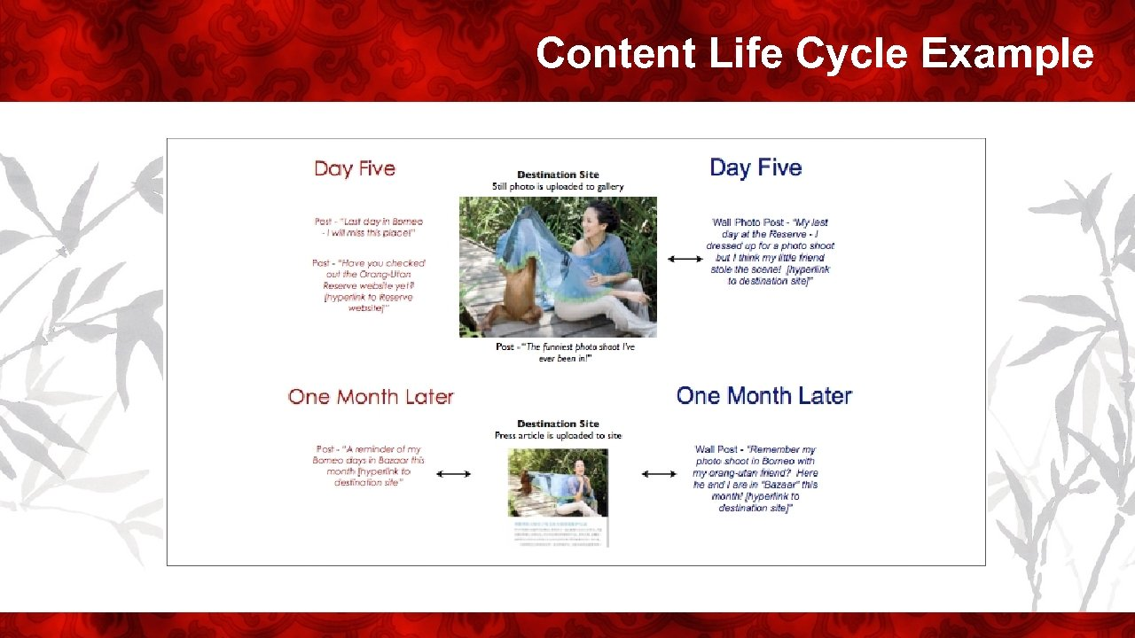 Content Life Cycle Example