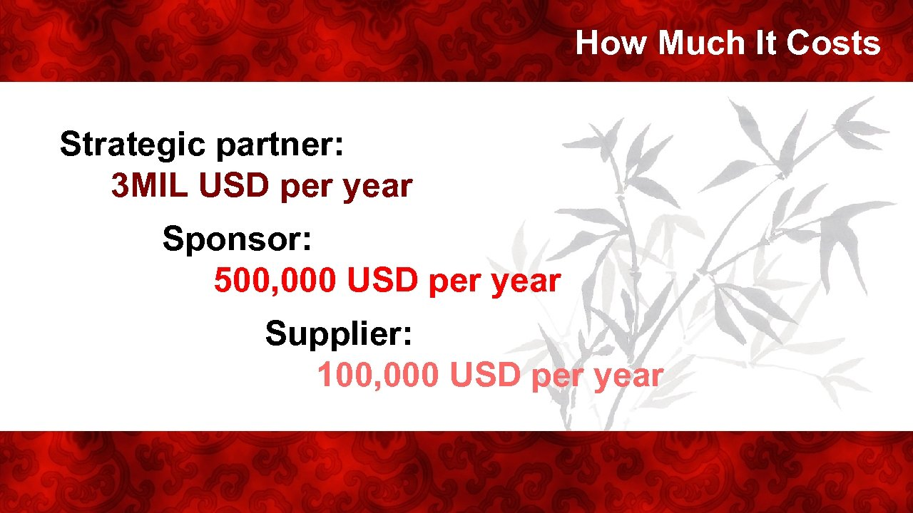 How Much It Costs Strategic partner: 3 MIL USD per year Sponsor: 500, 000