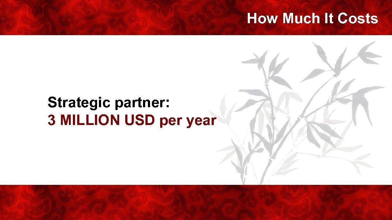How Much It Costs Strategic partner: 3 MILLION USD per year
