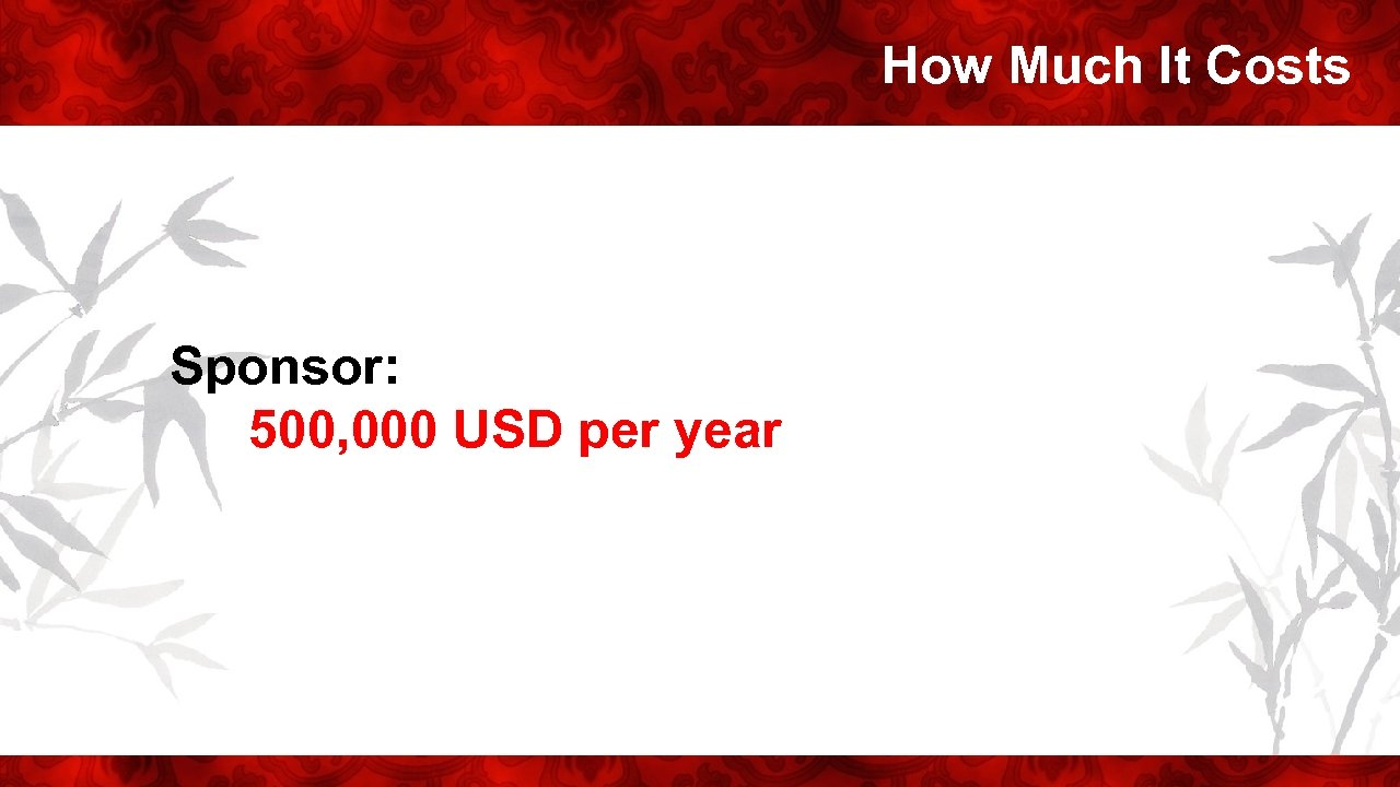 How Much It Costs Sponsor: 500, 000 USD per year