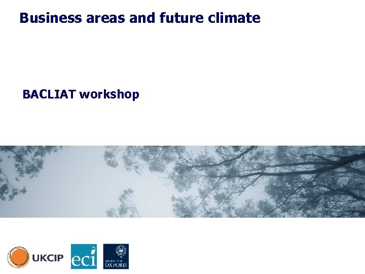 Business areas and future climate BACLIAT workshop