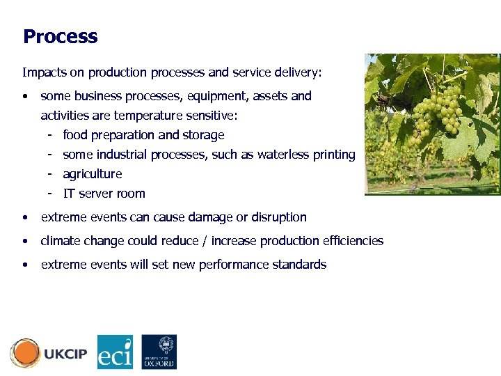 Process Impacts on production processes and service delivery: • some business processes, equipment, assets