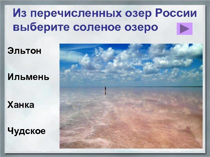 Из перечисленных озер России выберите соленое озеро Эльтон Ильмень Ханка Чудское