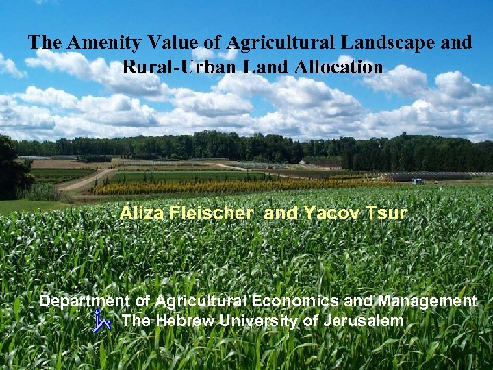 The Amenity Value of Agricultural Landscape and Rural-Urban Land Allocation Aliza Fleischer and Yacov