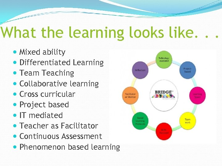 What the learning looks like. . . Mixed ability Differentiated Learning Team Teaching Collaborative