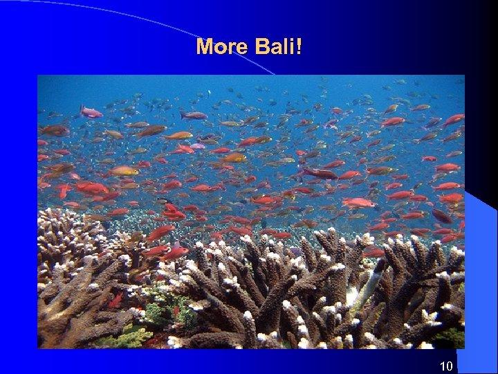 More Bali! 10