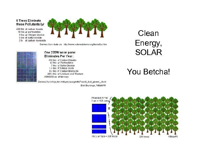 Clean Energy, SOLAR You Betcha!