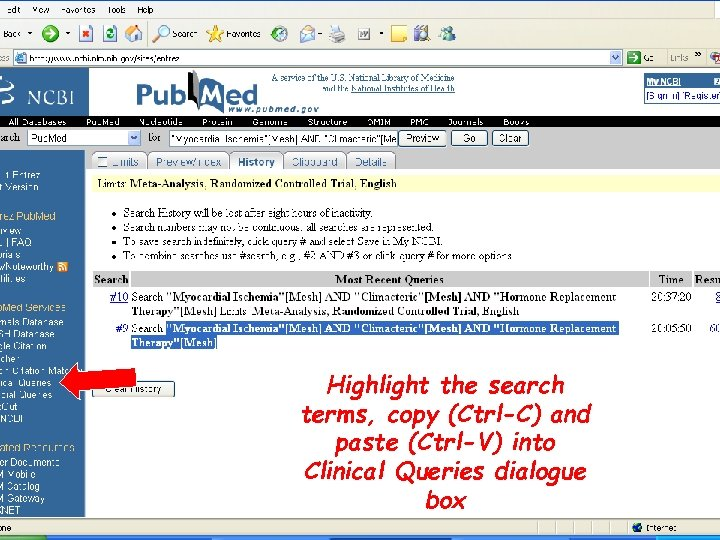 Highlight the search terms, copy (Ctrl-C) and paste (Ctrl-V) into Clinical Queries dialogue box