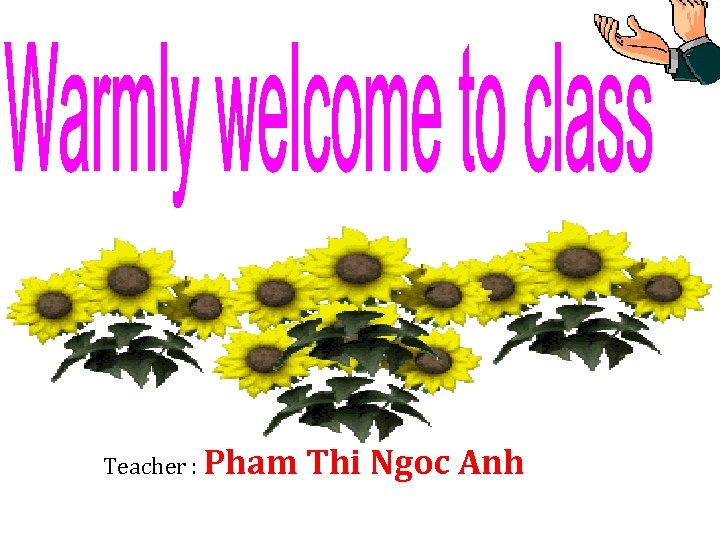 Teacher : Pham Thi Ngoc Anh