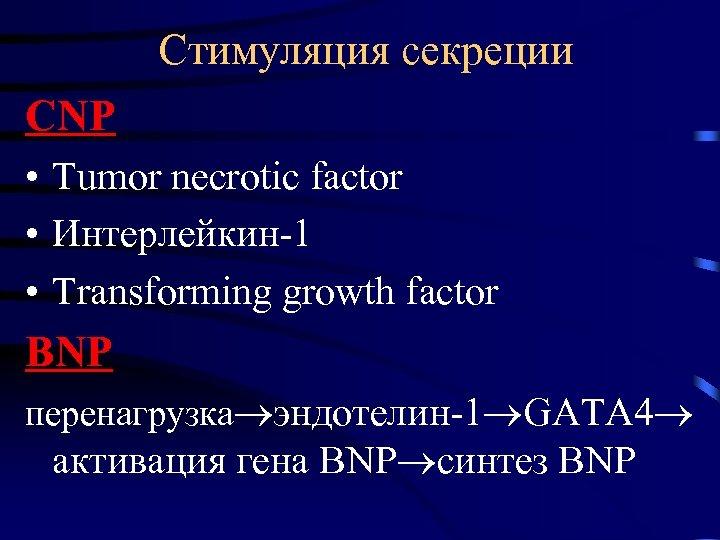 Стимуляция секреции CNP • Tumor necrotic factor • Интерлейкин-1 • Transforming growth factor BNP