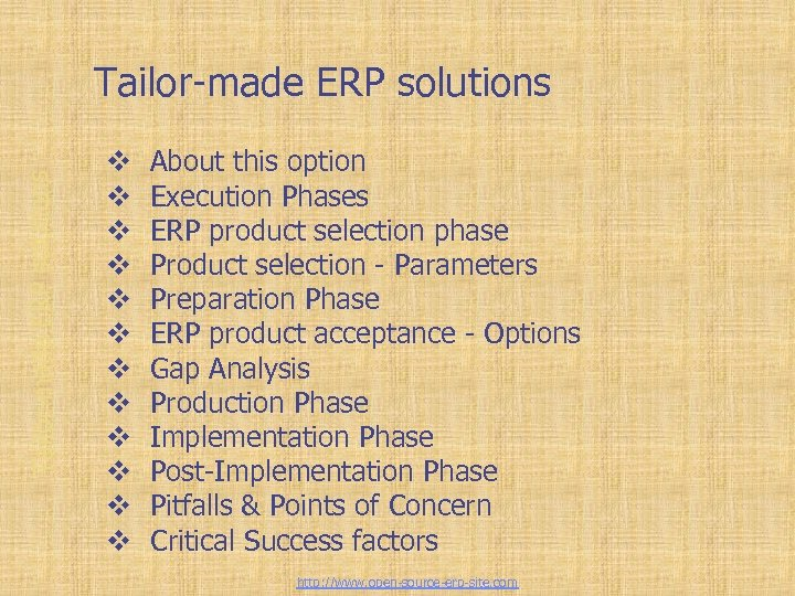 Tailor-made ERP solutions v v v About this option Execution Phases ERP product selection