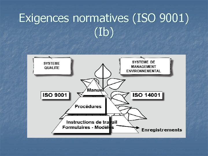 Exigences normatives (ISO 9001) (Ib)