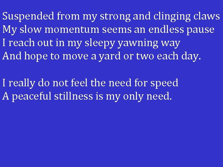 Suspended from my strong and clinging claws My slow momentum seems an endless pause