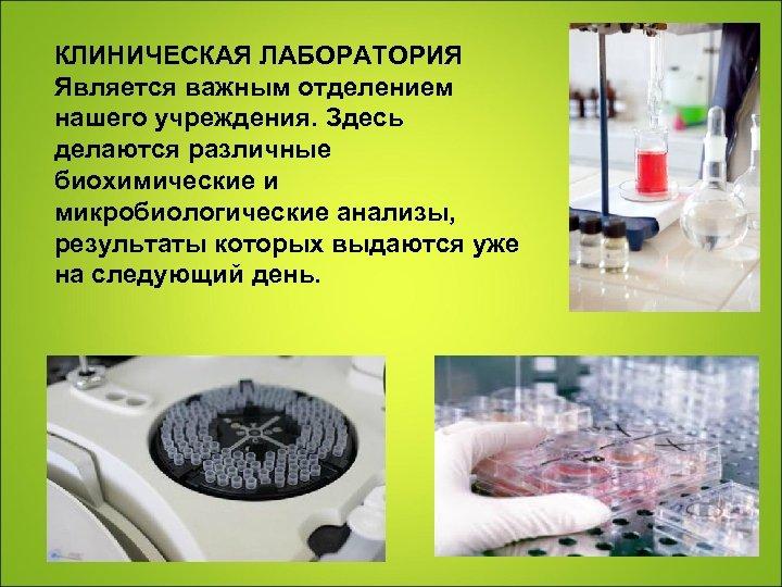 КЛИНИЧЕСКАЯ ЛАБОРАТОРИЯ Является важным отделением нашего учреждения. Здесь делаются различные биохимические и микробиологические анализы,