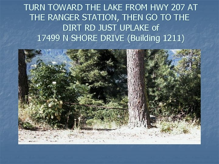 TURN TOWARD THE LAKE FROM HWY 207 AT THE RANGER STATION, THEN GO TO