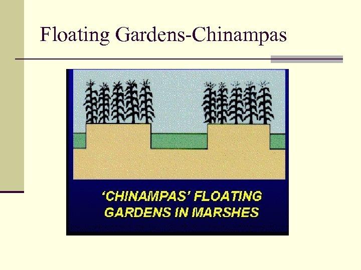 Floating Gardens-Chinampas