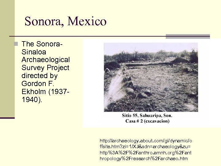 Sonora, Mexico n The Sonora- Sinaloa Archaeological Survey Project directed by Gordon F. Ekholm