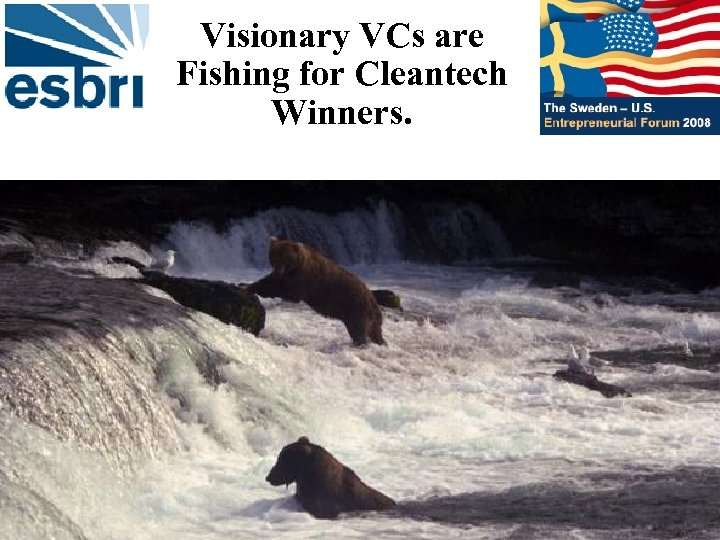Visionary VCs are Fishing for Cleantech Winners.