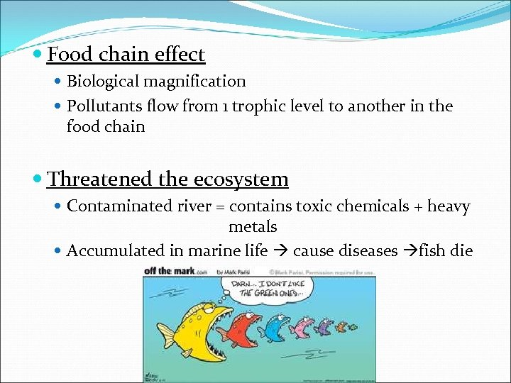 Food chain effect Biological magnification Pollutants flow from 1 trophic level to another