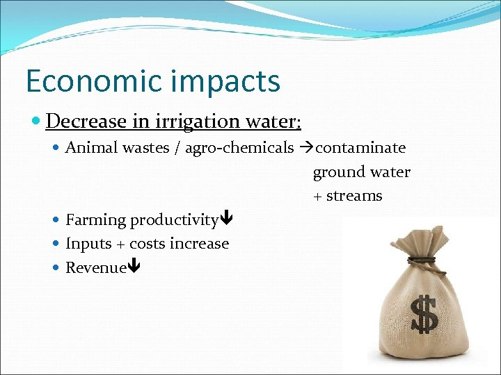 Economic impacts Decrease in irrigation water: Animal wastes / agro-chemicals contaminate ground water +