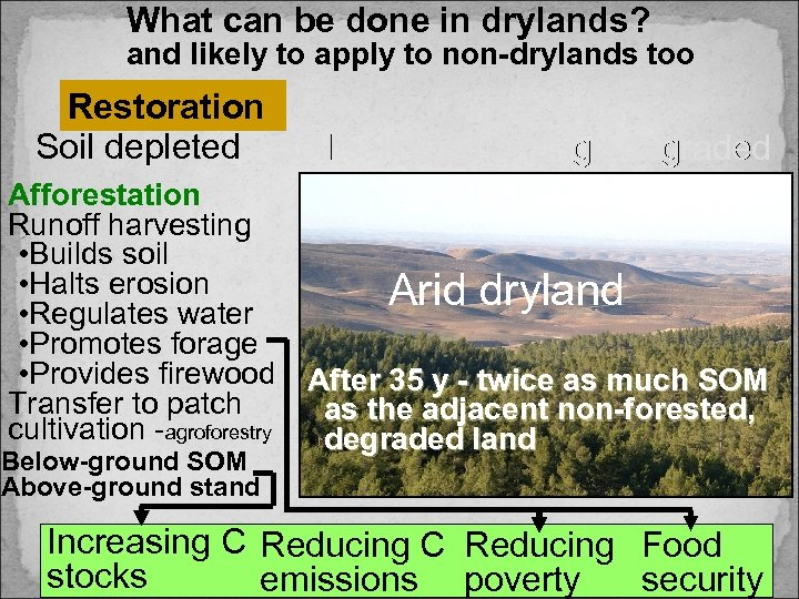 What can be done in drylands? and likely to apply to non-drylands too Restoration