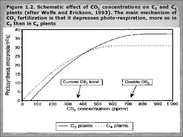 Figure 1. 2. Schematic effect of CO 2 concentrations on C 3 and C