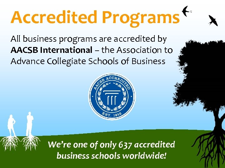 Accredited Programs All business programs are accredited by AACSB International – the Association to