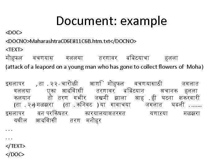 Document: example <DOC> <DOCNO>Maharashtra. C 06 E 811 C 6 B. htm. txt</DOCNO> <TEXT>