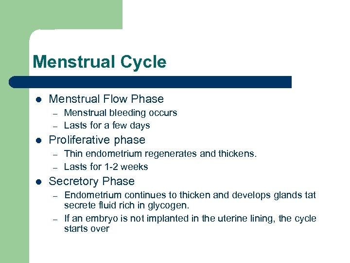 Menstrual Cycle l Menstrual Flow Phase – – l Proliferative phase – – l