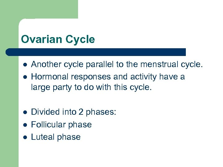 Ovarian Cycle l l l Another cycle parallel to the menstrual cycle. Hormonal responses