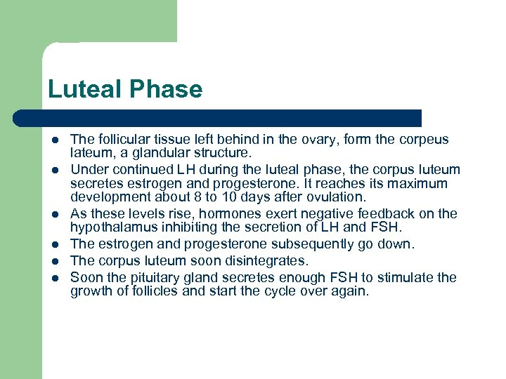 Luteal Phase l l l The follicular tissue left behind in the ovary, form