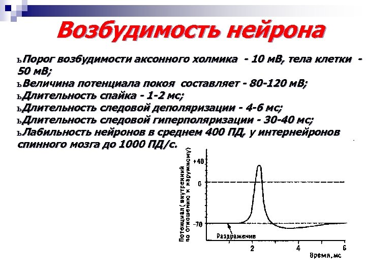 Возбудимость нейрона ь Порог возбудимости аксонного холмика - 10 м. В, тела клетки 50